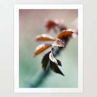 Nature Colors Art Print