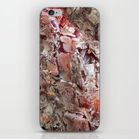 Ashes to Ashes iPhone & iPod Skin