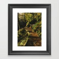 Path at Aira Force Framed Art Print