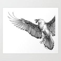 Lammergeier Art Print