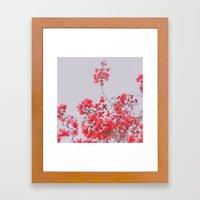 Sweet Pink  Framed Art Print