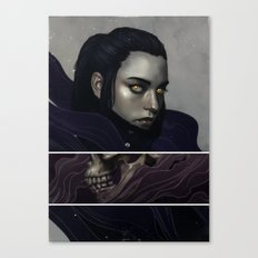 The Historian.  Canvas Print