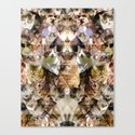 Cat Kaleidoscope Canvas Print