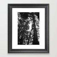 through the tree line. Framed Art Print