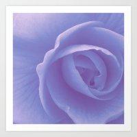 FLOWER 029 Art Print