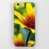 Prairie Flower II iPhone & iPod Skin