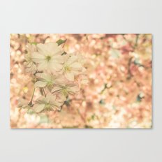 a sunny day in spring Canvas Print