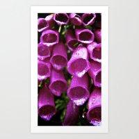 Pink Bells (1) Art Print