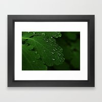 Green Drops  Framed Art Print