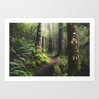 Oregon Pathway Art Print
