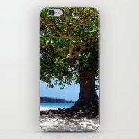 beach tree tropic iPhone & iPod Skin