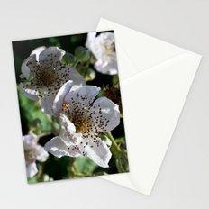 Blackberry Blossom Stationery Cards