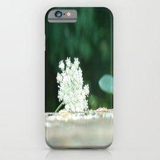 Queen Anne's Lace w/ bokeh iPhone 6s Slim Case