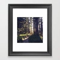 Pacific Northwest Framed Art Print