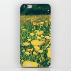 Field of yellow iPhone & iPod Skin