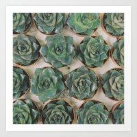 Succulent Collection Art Print