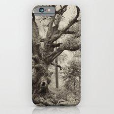 Old Oak Dark  Slim Case iPhone 6s