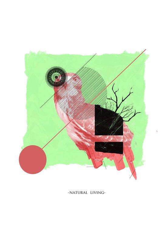 Natural Living Art Print