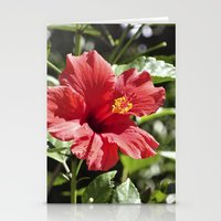 Hibiscus V Stationery Cards