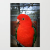 Beautiful Bird East Park… Canvas Print
