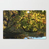 Low Hangers Canvas Print