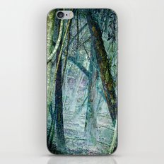 Entrance to another world iPhone & iPod Skin