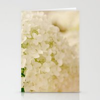 Vintage Nature Botanical White Hydrangea Flower Head Stationery Cards