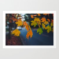 Fall Walks Art Print