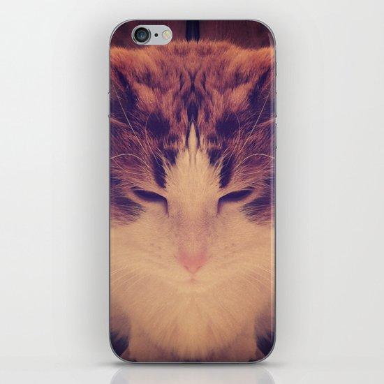 Symmetrical Feline iPhone & iPod Skin