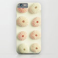 Sea Urchin Collection Slim Case iPhone 6s
