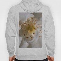 White bloom Hoody