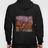 Mad Colors Of Autumn Hoody
