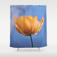 A spring wild yellow flower in blue background. Shower Curtain
