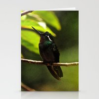 Hummingbird on a branch Stationery Cards