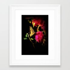 Sunlight & Spices Framed Art Print