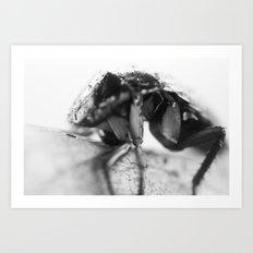doin the cockroach Art Print