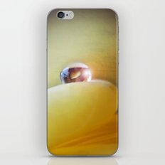 Yellow tear iPhone & iPod Skin