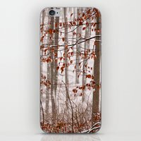Snowy Forest iPhone & iPod Skin