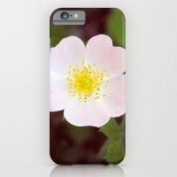 Moody Dog Rose iPhone 6 Slim Case