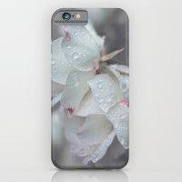 naivete iPhone 6 Slim Case