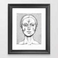 Acus-punctum Insecta (Se… Framed Art Print