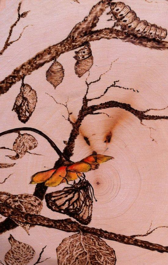 Caterpillar to Butterfly Art Print