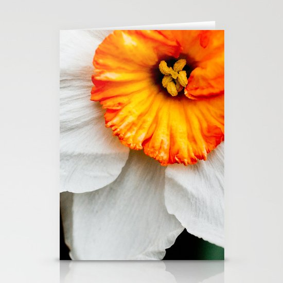 Wall Flower Stationery Card