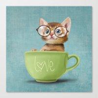 Mr. Micio Miao - Kitten … Canvas Print