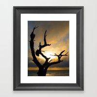 Stark Framed Art Print