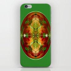 Amazed globe iPhone & iPod Skin