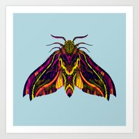 Elephant Hawk Moth Art Print