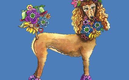 Art Print - Poodle Dee Doo Two - Shelley Ylst Art