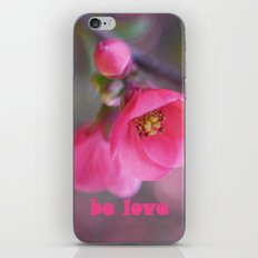 Be Love iPhone & iPod Skin