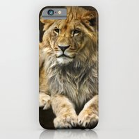 iPhone & iPod Case featuring The young lion by Angela Dölling, AD DESIGN Photo + Photo